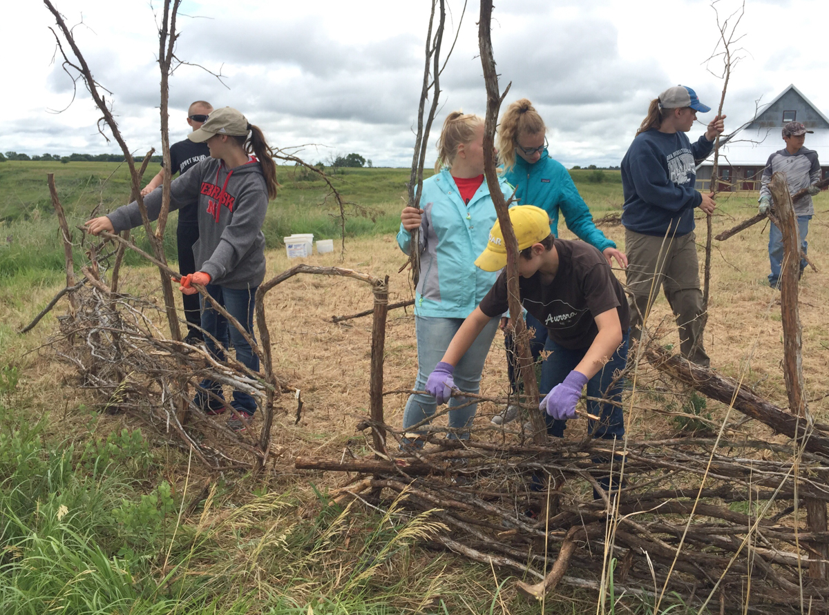 Youth build up the sculptural fence branch by branch. Photo credit/Sarah Bailey
